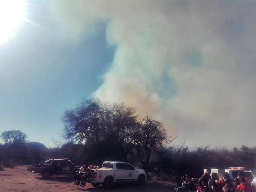 San Luis: controlaron el incendio forestal en la zona de Juan Llerena