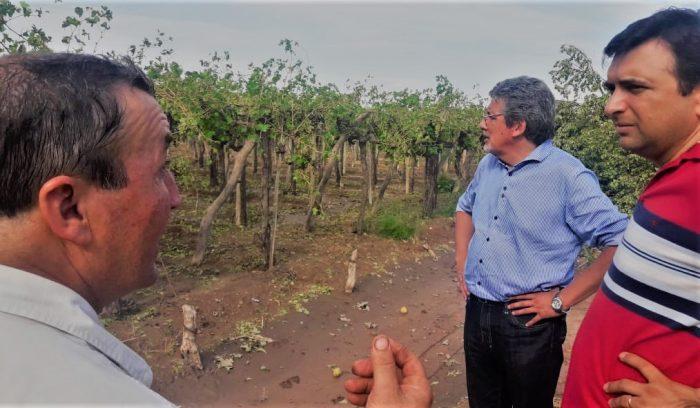 Comenzaron los pagos del Fondo Compensador Agrícola a productores afectados por contingencias climáticas.